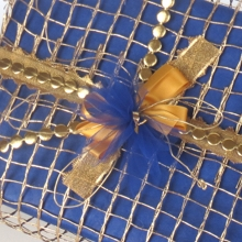 Box in blue with gold mesh