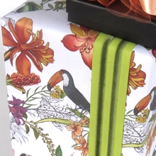 Box wrapped in toucan patterned paper